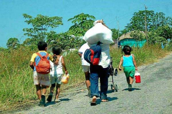 Así avanza proceso de restitución de tierras en el Valle del Cauca