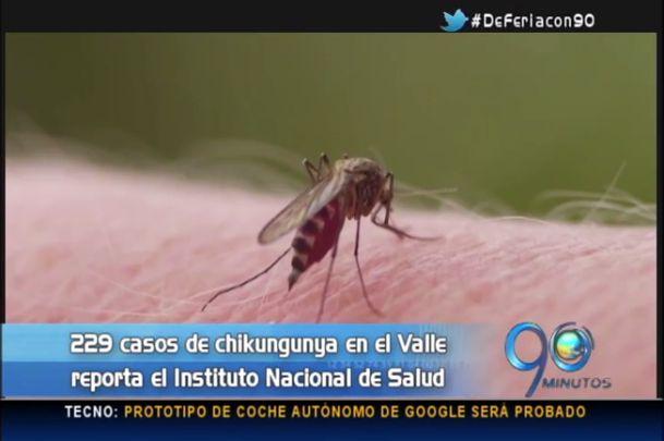 Alerta por chikunguña en el Valle, ya son 229 los infectados
