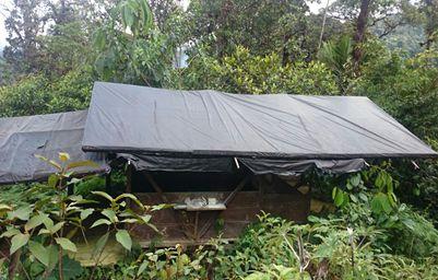 Ejército desmantela estructura al servicio de narcotráfico en el Valle