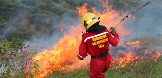 Catorce incendios forestales en los primeros cinco días de enero en Cali