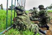 Se reactivan combates entre el Ejército y las Farc en el Cauca