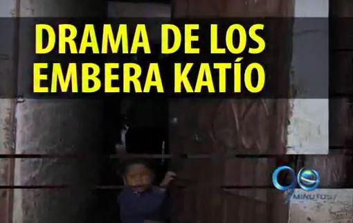 Las condiciones no están dadas para retorno de Emberas Katío