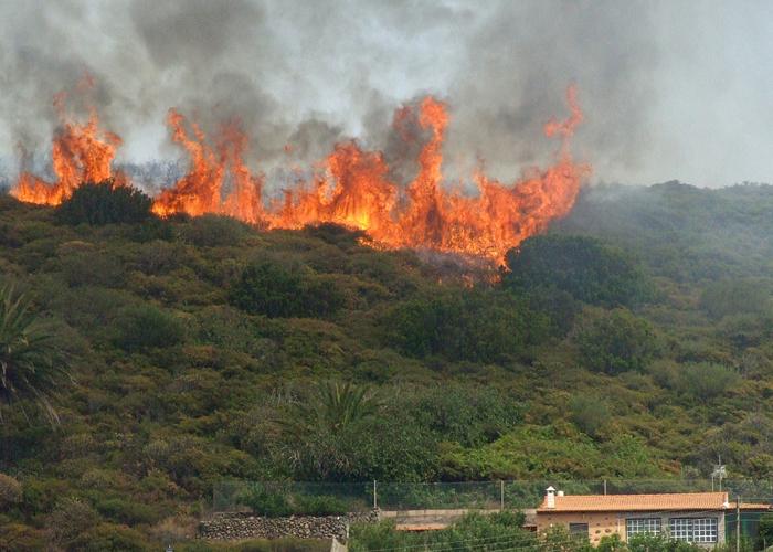 Durante el 2015 se han presentado 130 incendios forestales