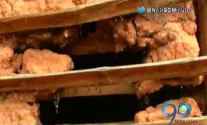 Temblor de ayer afectó a 200 viviendas en Morales, Cauca