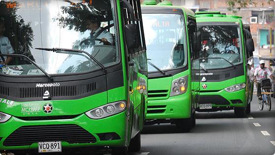 Acción Popular dejaría 134 buses del Mío sin operar