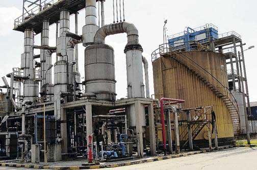 Destilería San Martín reactivaría sus operaciones en octubre