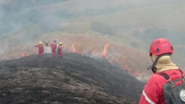 Incendio en Pradera ha consumido por lo menos 30 hectáreas