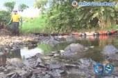 Nuevo Atentado al oleoducto en Tumaco amenaza fuentes hídricas de Nariño