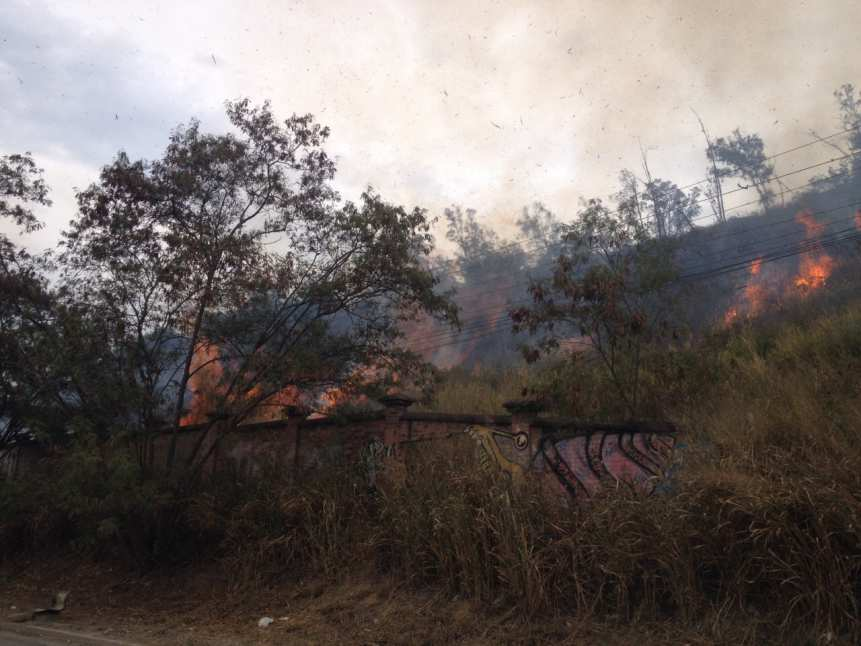 Bomberos controlaron incendio forestal en Altos de Menga
