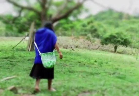 La difícil situación de los indígenas desplazados en Colombia