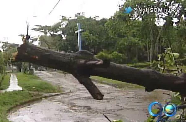 Tempestad en la tarde del jueves afectó a 8 circuitos de energía