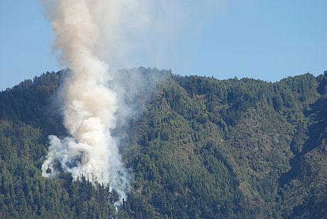 Incendios forestales en el país solo se controlan con prevención