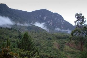 Con barreras cortafuegos DAGMA previene incendios forestales para próxima temporada de sequía