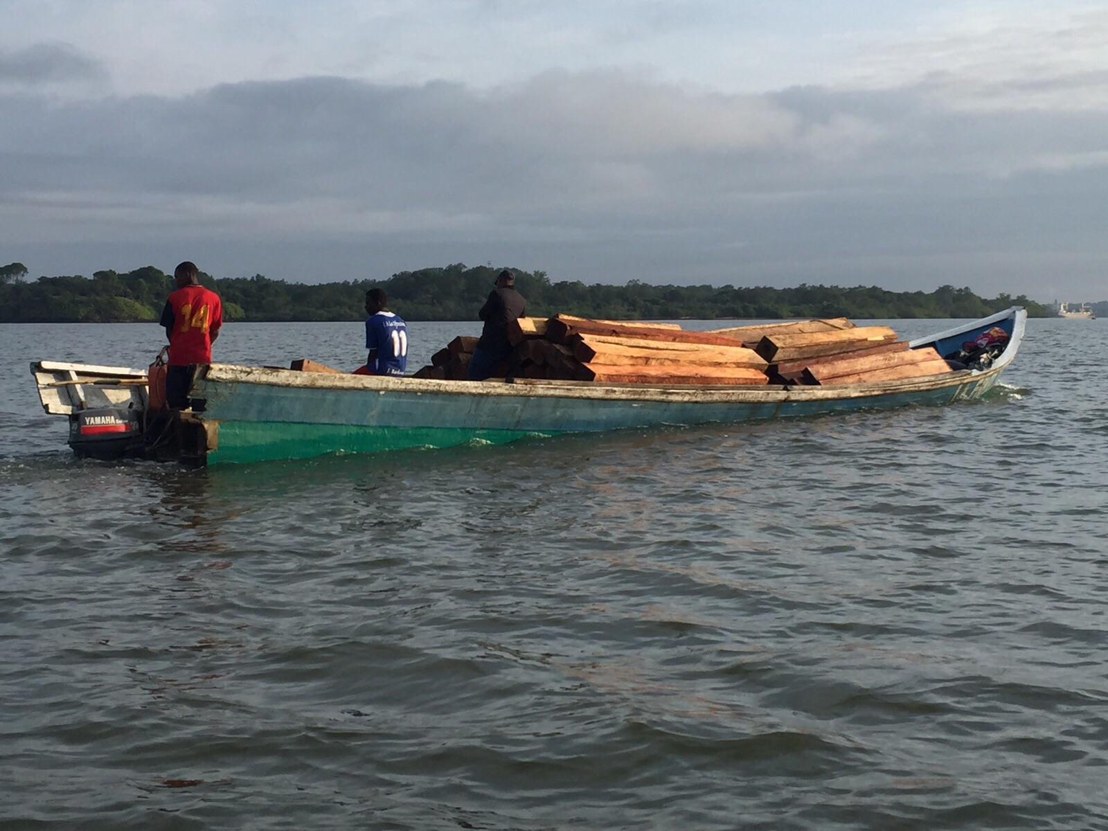 Incautados 1.054 metros cúbicos de madera en la bahía interna de Buenaventura