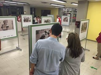 Exposición de desmovilizados estará abierta hasta este viernes