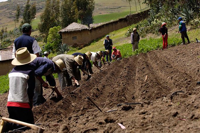 Debatir el agro es urgente para el país del posacuerdo: U. Nacional