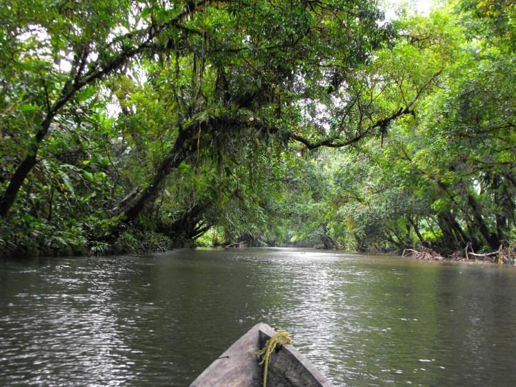 Desbordamiento del río Napi causa inundaciones en Guapi, Cauca