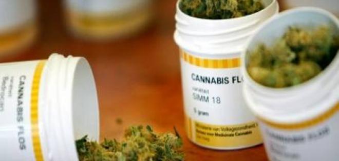 Decreto legalizaría la marihuana medicinal en Colombia