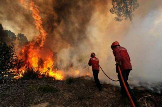Incendios en la ciudad disminuyeron en comparación al 2014