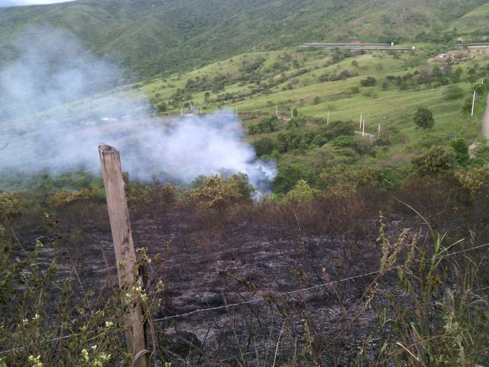 Incendio forestal en la vereda Los Limones generó pánico en Montebello