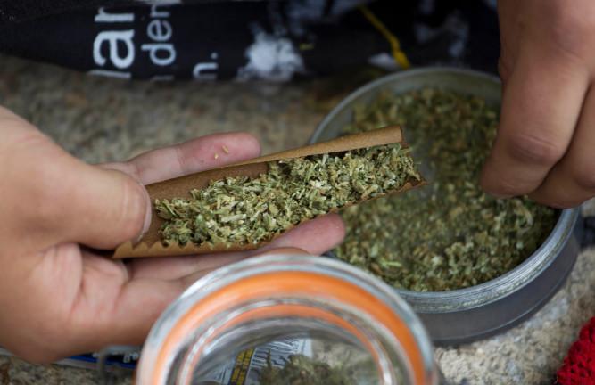 Ya fue firmado el decreto para el uso de marihuana medicinal