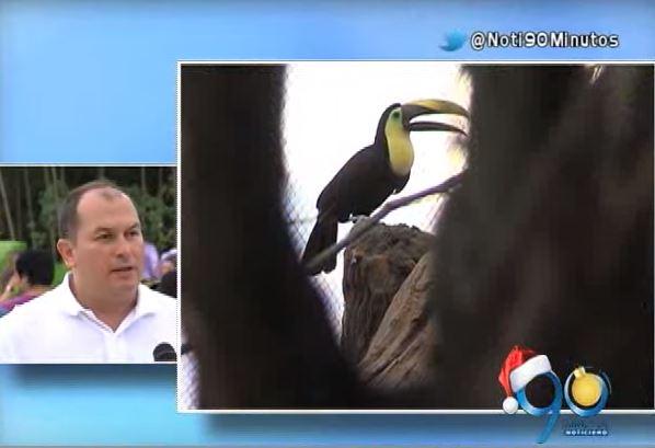 Ucumarí, el nuevo zoológico del Eje Cafetero