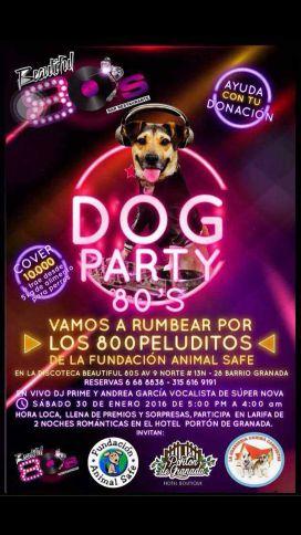 El Dog Party, la fiesta para ayudar a los perritos de la calle
