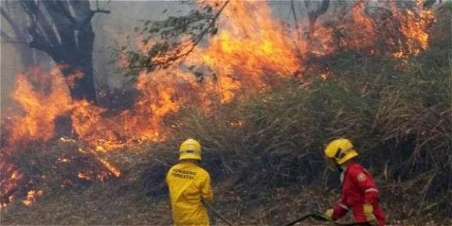 Alerta roja en el Valle por incendios forestales