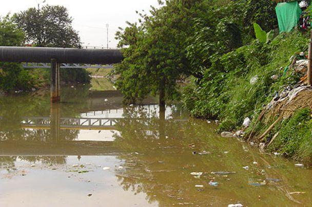 Ríos Meléndez y Cañaveralejo sufren por sequía y contaminación