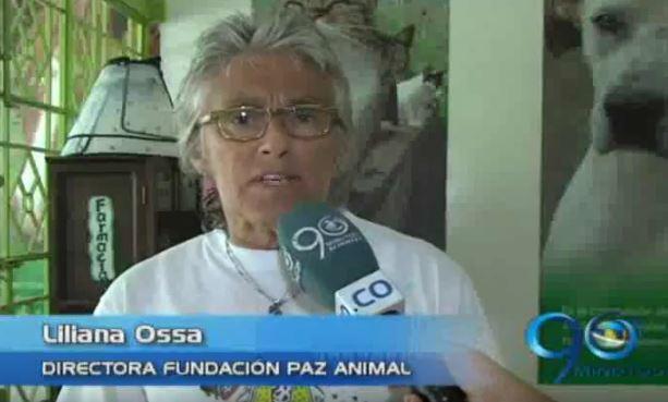 Paz Animal invitó a utilizar los servicios de la fundación, dada la crisis financiera