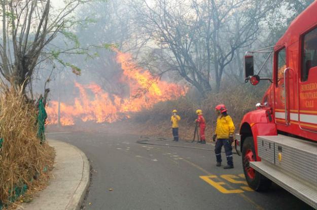 Diez hectáreas han sido consumidas por incendio forestal en Golondrinas