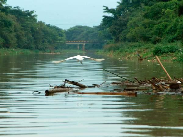 Continúa búsqueda de menor que cayó al río Cauca