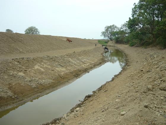 CVC busca recuperar la Laguna de Sonso con la siembra de árboles y peces