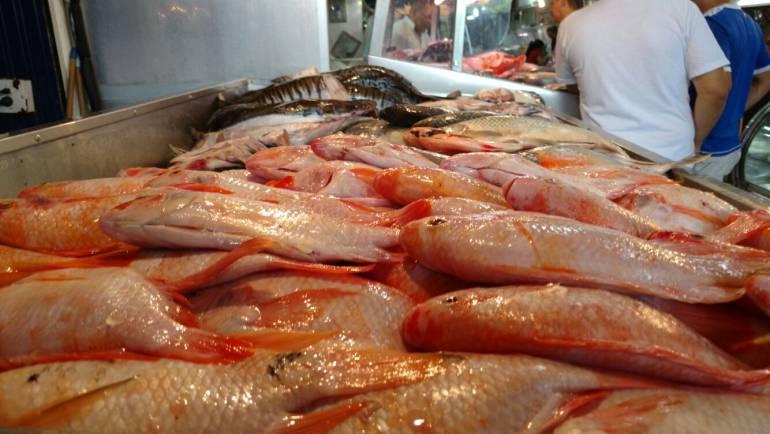 Autoridades de salud avalan la compra de pescado en Cali