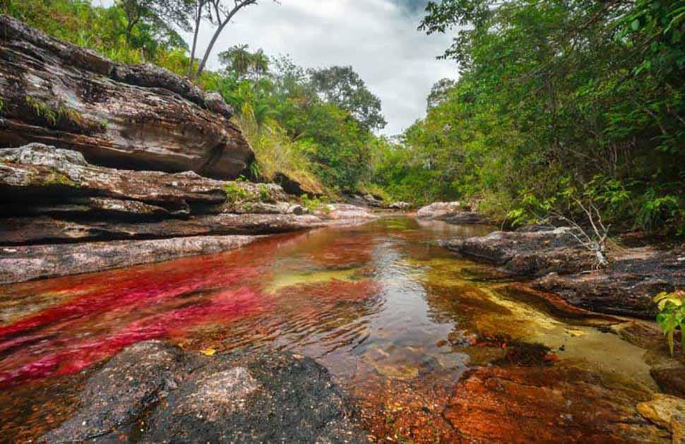 Gobierno suspendió licencia a petrolera que se ejecutaría en Caño Cristales