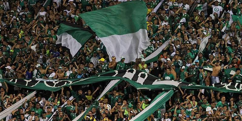 Diez fechas de sanción para la tribuna sur del estadio Palmaseca