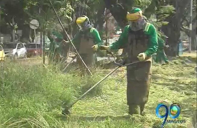 Cobro por mantenimiento de zonas verdes llegará en factura de servicios publicos