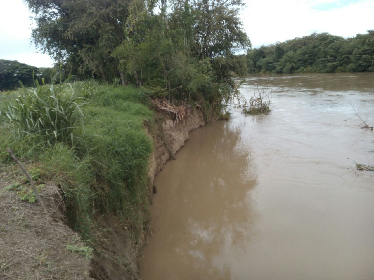 Falla en el dique del Río Cauca pone en alerta amarilla a Roldanillo