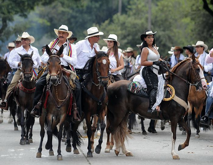 Animalistas celebran la no presencia de la cabalgata en la Feria de Cali