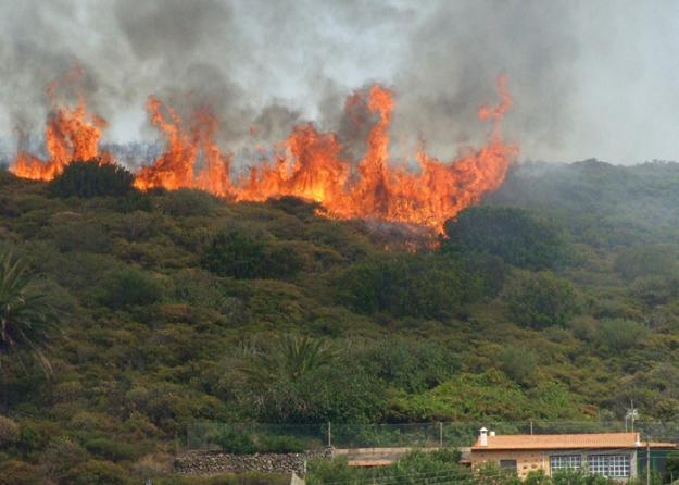 Alcaldes a tomar medidas preventivas para evitar incendios