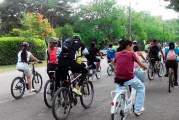Destacan importante reducción de accidentes con bicicletas en Cali durante 2018