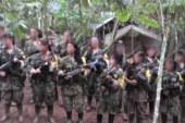 Gobierno y Farc acuerdan plan de acogida para menores que salgan de guerrilla
