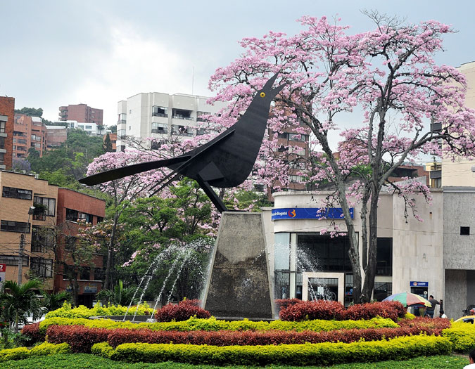 12.000 árboles serán retirados y reemplazados por guayacanes