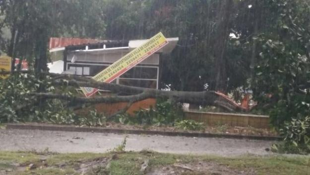 Siete municipios del Valle del Cauca afectados por fuertes lluvias