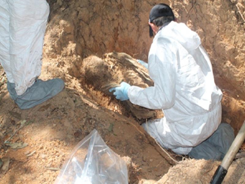Restos óseos de personas desaparecidas serán entregados en el Valle