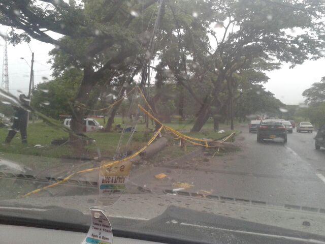 Un vehículo chocó y derrumbó un poste en el sur de Cali