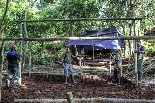 Gobierno prepara zonas para desmovilización de las Farc