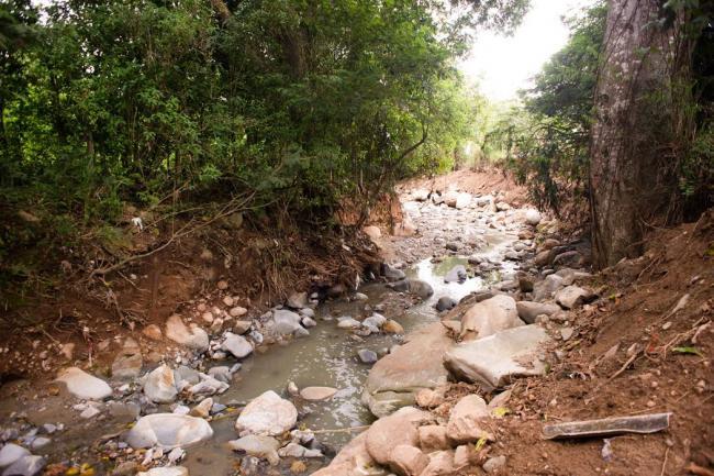 Encienden alarma tras represamiento de quebrada en el Cauca