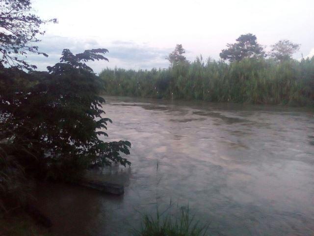 Alerta amarilla en Cartago por desbordamiento del río La Vieja