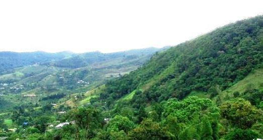 Rescatan tres topógrafos perdidos por 10 horas en Cerro Gordo